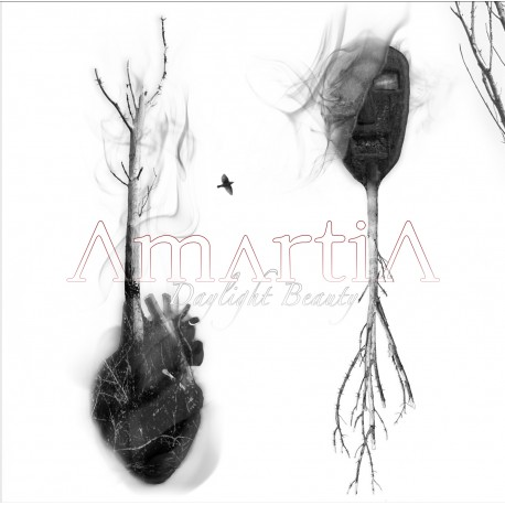 Amartia -Daylight beauty